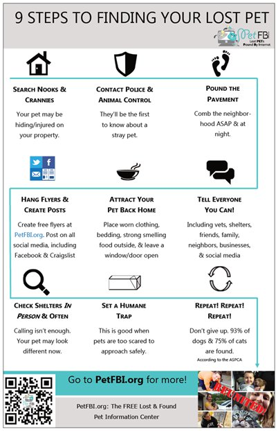 9 step to finding a lost pet flyer